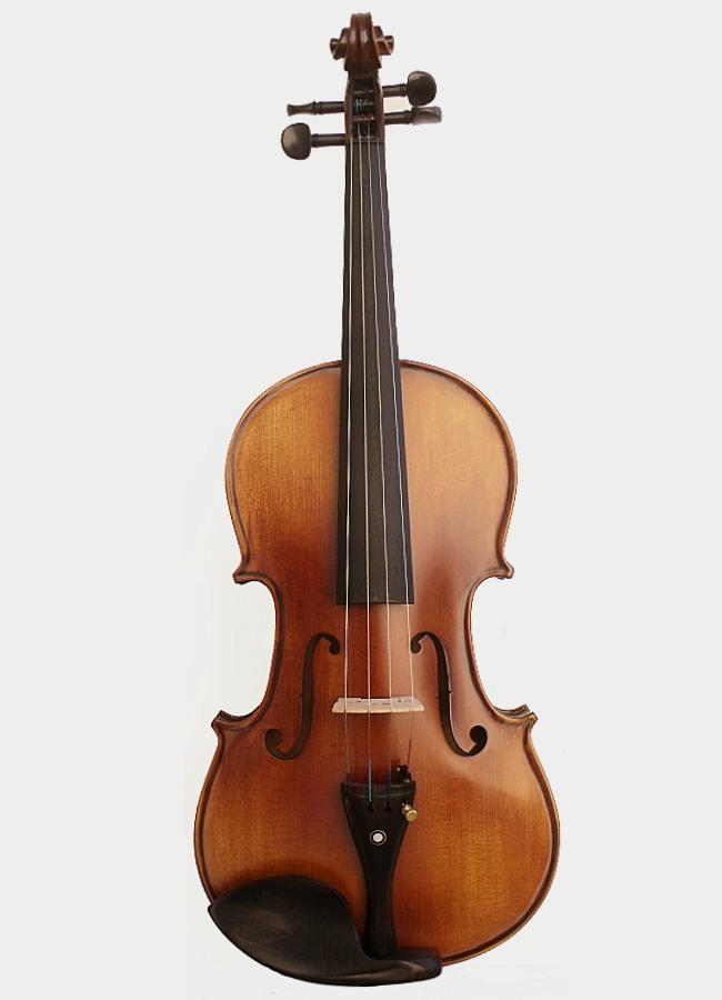 Achat violon Staccato
