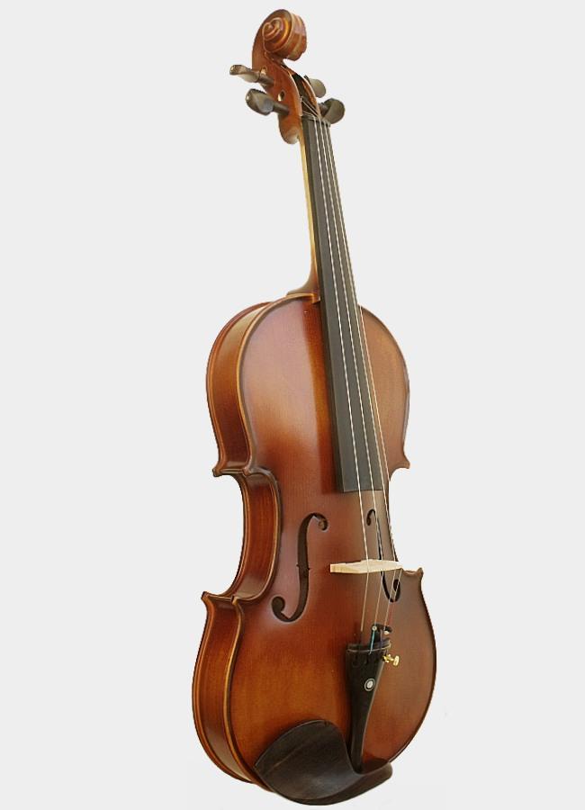 Achat violon legato