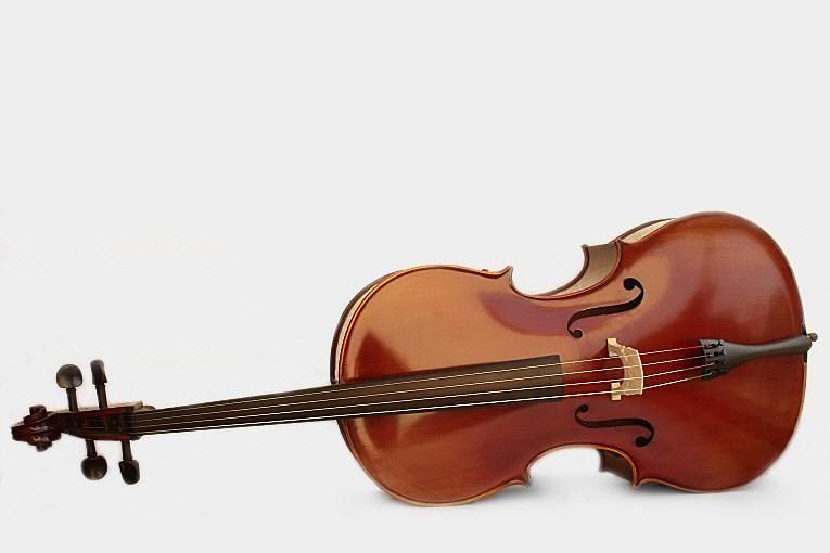 Violoncelle Egil acoustique 4/4 pas cher qualité prix facilités de paiement 4x ou LOA sans frais