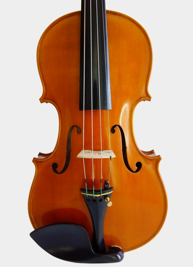 Violon Mont Saint-Romain