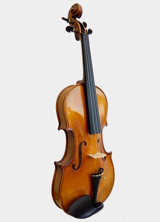 Violonn Unique Paloma Valeva